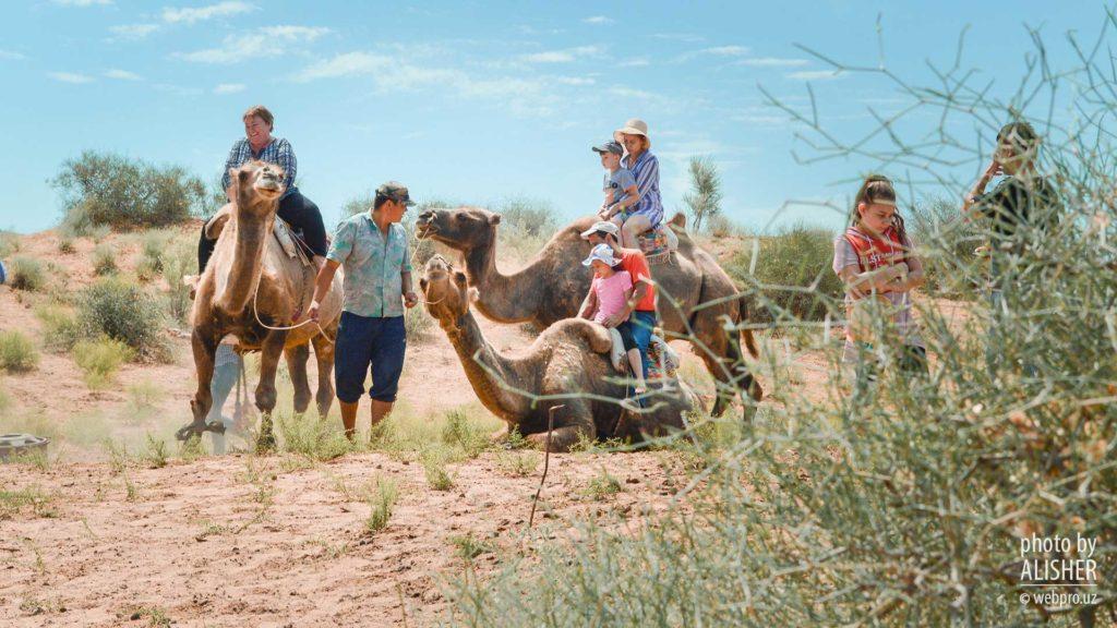 ウズベキスタンのヌラタにてラクダ乗り体験