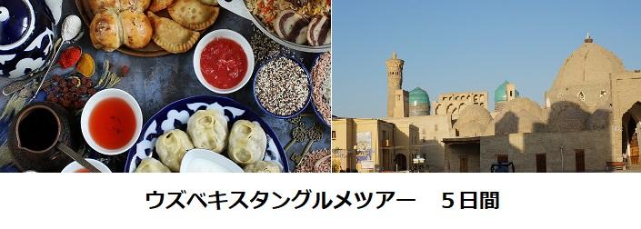 ウズベキスタングルメツアー5日間